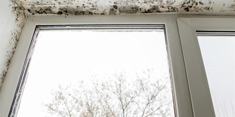 hoe ontstaan condensatieproblemen in huis